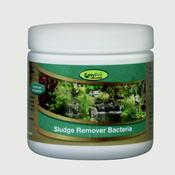 Sludge Remover Bacteria - Dry 12 ct